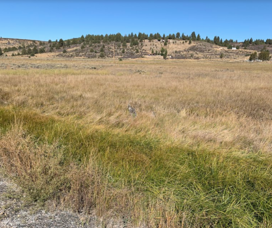 oregon land for sale