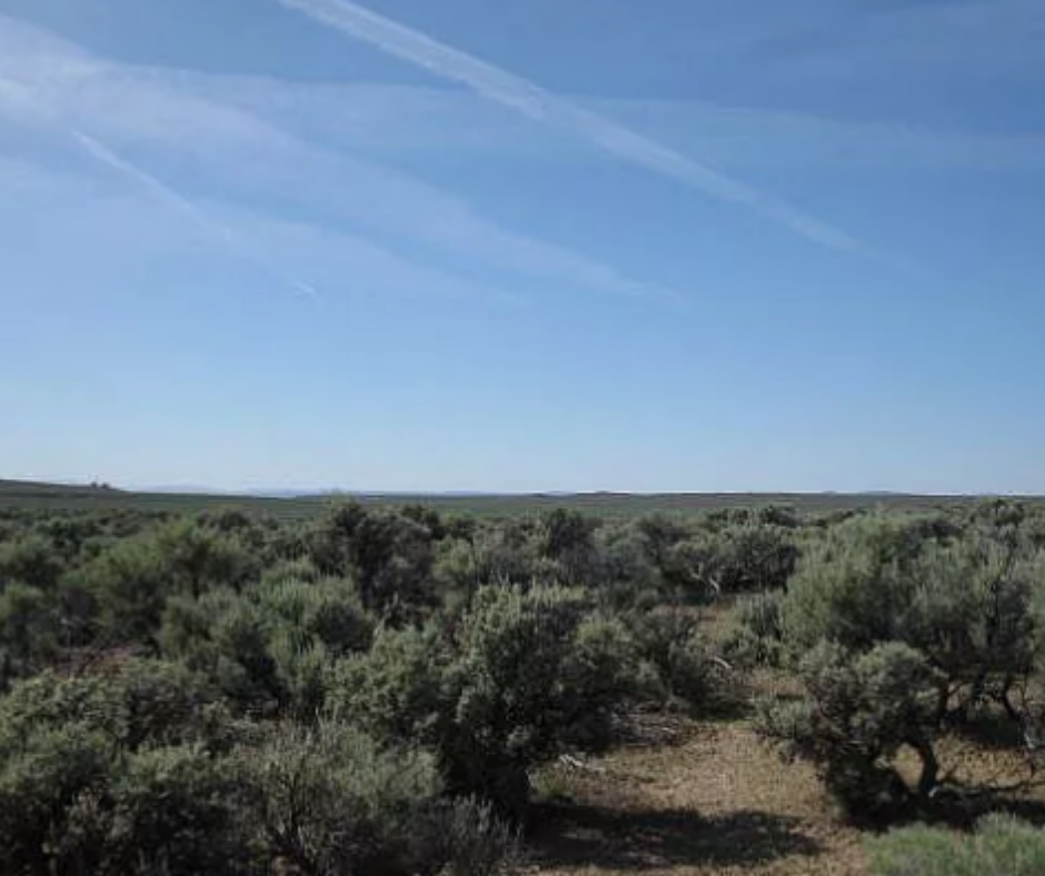 land for sale christmas valley