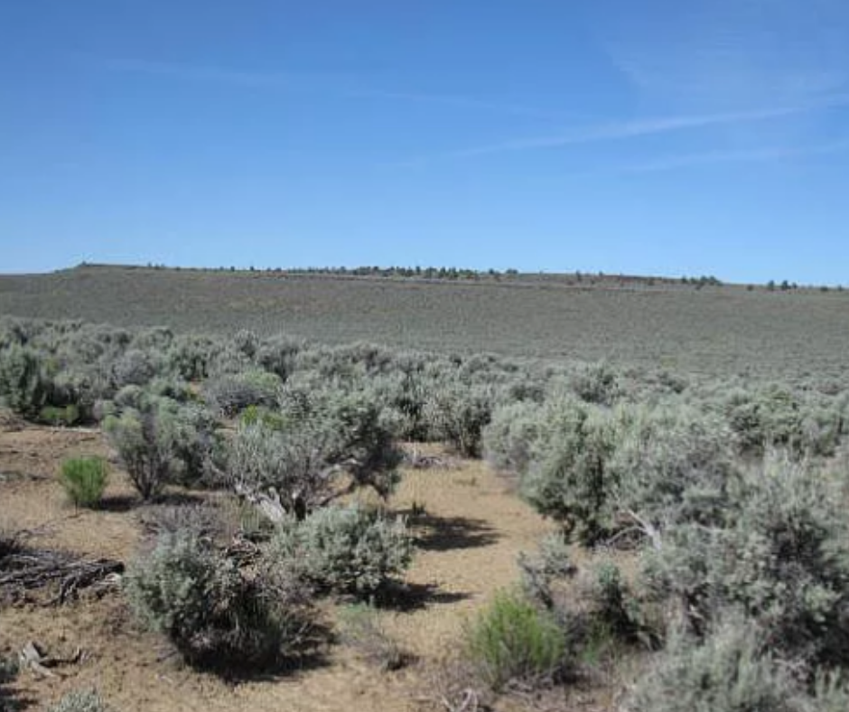 land for sale lake county