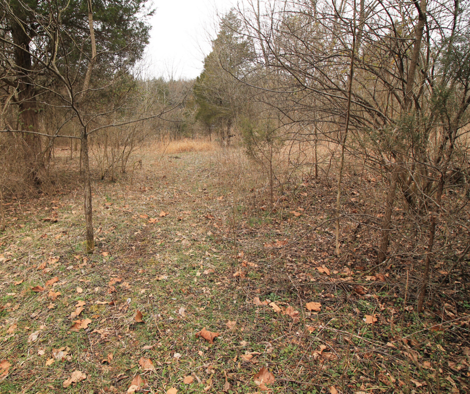 land for sale dittmer mo