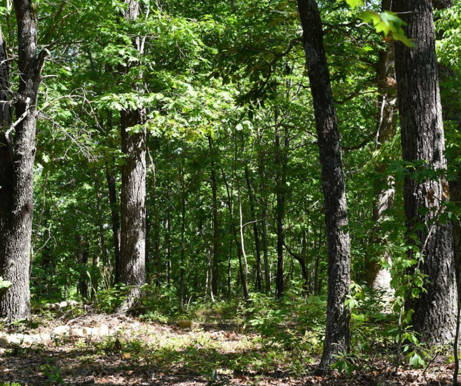 land for sale in missouri