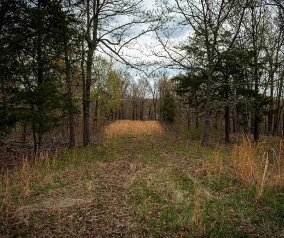 land for sale MO